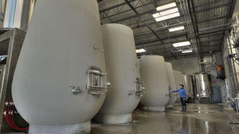 Wine Fermentation in a Concrete Tank