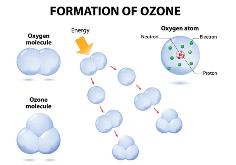 The Formation Process of Ozone